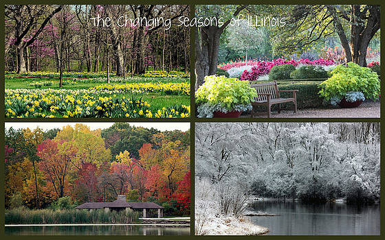 Rosanne Jordan - Seasons in Illinois