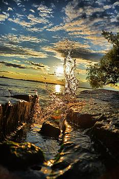 Seaway Splash by Emily Stauring