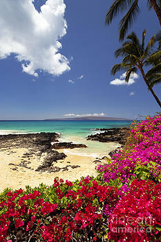Secret Beach at Makena by David Olsen
