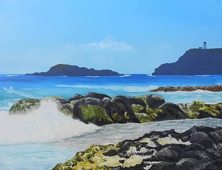 Secret Beach - Kauai by Dorothy Merritt