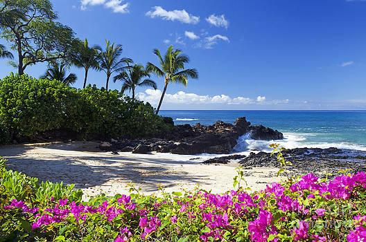Secret Beach Makena by David Olsen