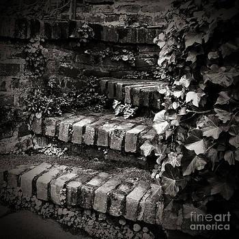 Charmian Vistaunet - Secret Garden Stairs