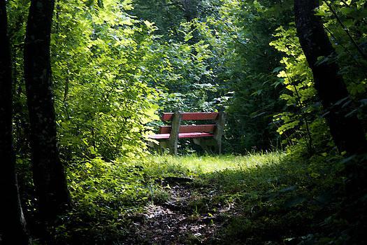 Secret Place by Brady Lane