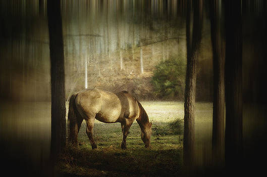 See Through The Blur by Kathy Jennings