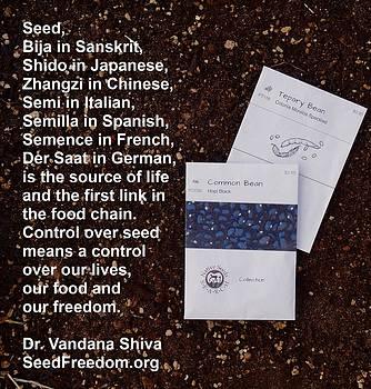 Seed Freedom by Jon Simmons