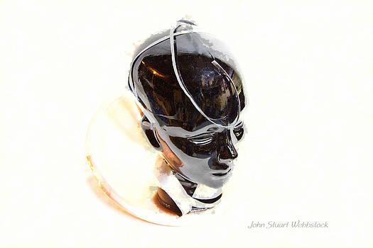 Sensitivity by John Stuart Webbstock