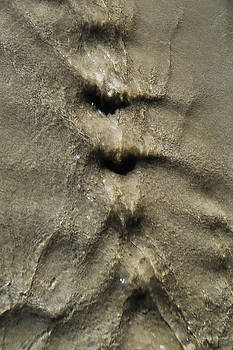 Donna Blackhall - Sensuous Sand