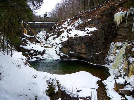 Sentinel Pine Bridge in Winter by Sarah Egan