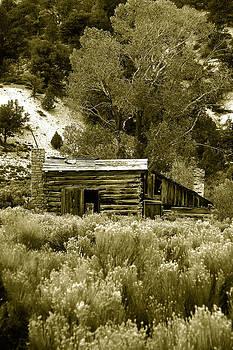 Sepia Country Cabin by Martin Sullivan