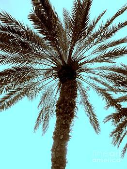 Sepia Palm by Jeanne Forsythe