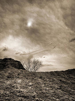 Sepia skies by Meir Ezrachi