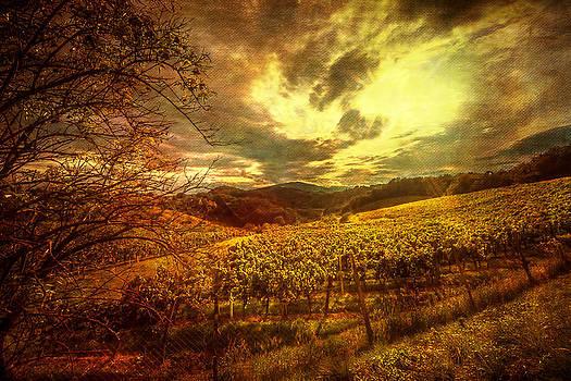 September Gold by Vjekoslav Antic