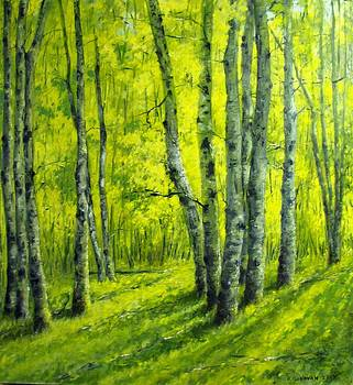 September in the Woods by Boris Garibyan