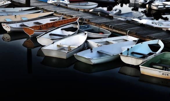 Thomas Schoeller - Serene Harbor Downeast Maine