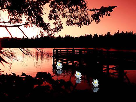 Serene Scene at Lake Ballinger by Eddie Eastwood