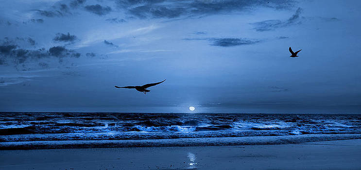Serenity Blues by Cindy Haggerty