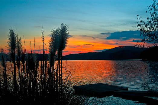 Serenity Orange by Susan Leggett