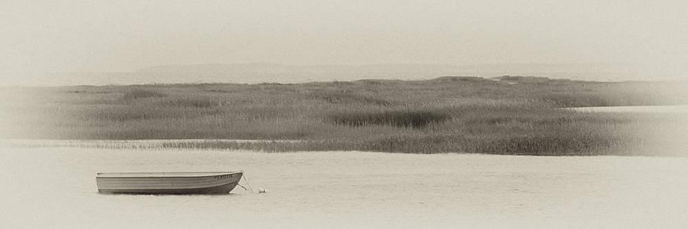 Serenity by Rebecca Skinner
