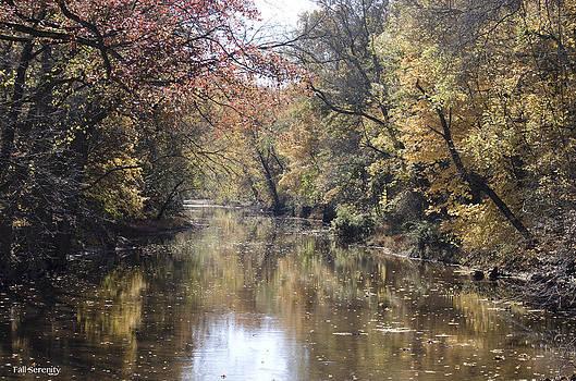 Serenity River by Nancy Edwards