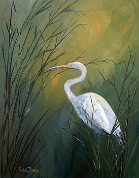 Serenity by Suzanne Theis