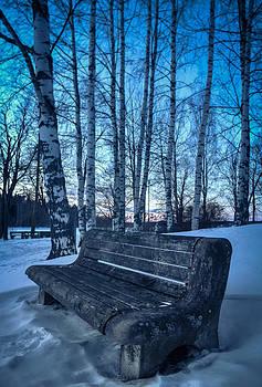 Servant by Matti Ollikainen