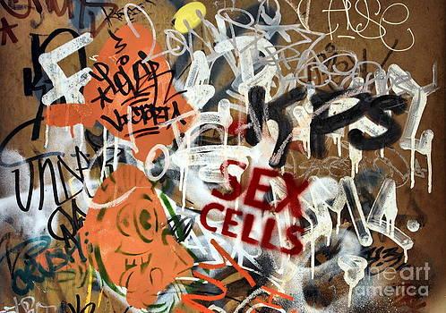 Andrea Kollo - Sex Cells Street Art