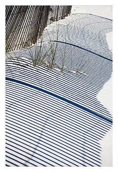Shadow Grass 1 by John Clemmer Photography