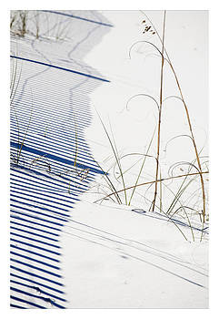 Shadow Grass 3 by John Clemmer Photography
