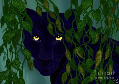 Nick Gustafson - Shadow of the Rainforest