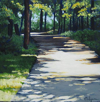 Shadow Path by Carlynne Hershberger