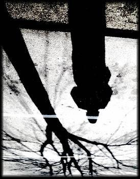 ShadowPlay by Michael Gavlick