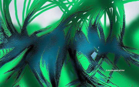 Shadows by Fatima Hameurlaine
