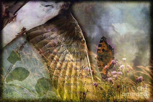 Liz  Alderdice - Shadows of Yesterday