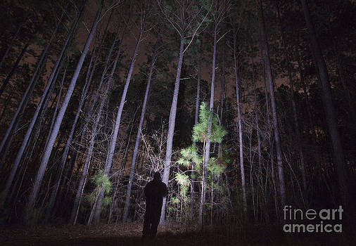 Jonathan Welch - Shadowy Figure in a Forest at Night