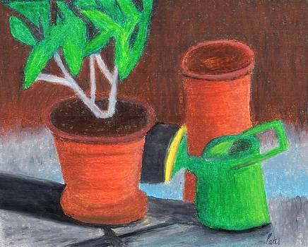 Shady Garden Corner by Bav Patel
