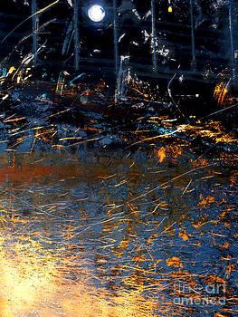 Shards by Robert Riordan