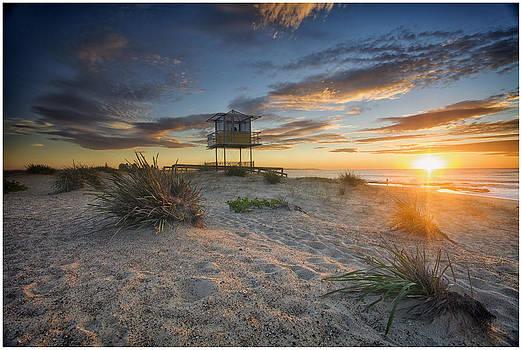 Shark Tower 1 by Steve Caldwell