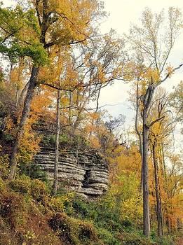 Marty Koch - Shawee Bluff in Fall