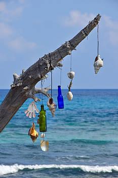 Skip Hunt - She Sells Seashells