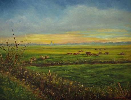 Sheep at sunset by Andries Hartholt