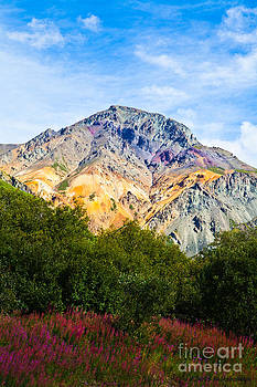 Sheep Mountain Alaska   by Chris Heitstuman