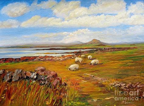 Sheep near Carna Cashel road by Maureen Dowd