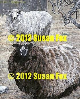 Sheep Thrills by Susan Fox