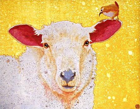 Sheep Whisperer by John Pinkerton