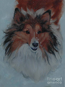 Sheltie in Snow by Pet Whimsy  Portraits
