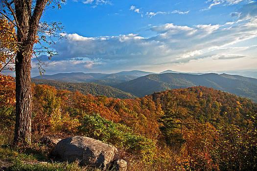 Shenandoah Autumn by Suzanne Stout