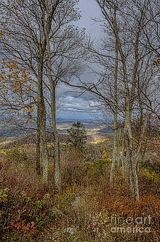 Shenandoah Delight by Joe McCormack Jr