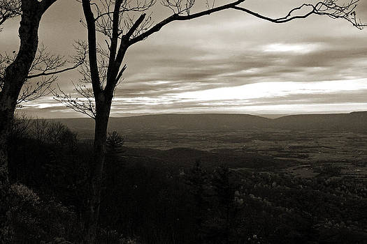 Carolyn Stagger Cokley - shenandoah hillside sepia