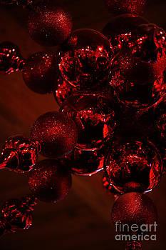 Linda Knorr Shafer - Shimmer In Red