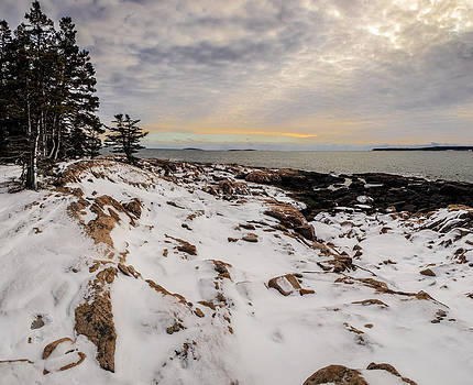 Ship Harbor at Acadia National Park by Brent L Ander